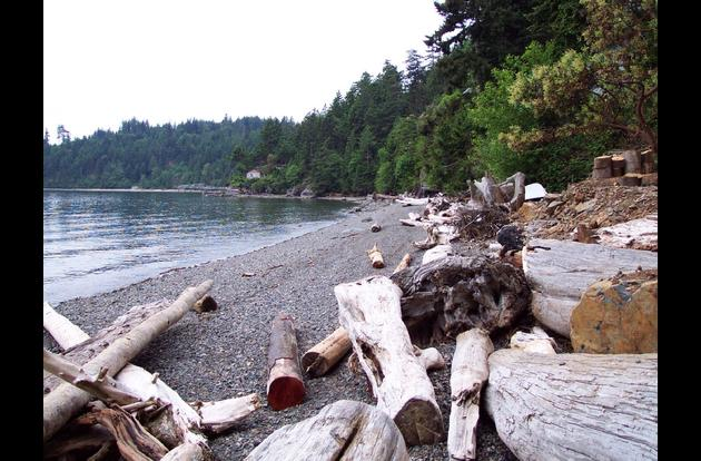 Eagle Beach is great for swimming, walking, beach combing and relaxing.